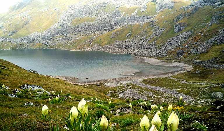 Vasuki Tal Uttarakhand | Vasuki Tal Trek, Best time to Visit, How to Reach